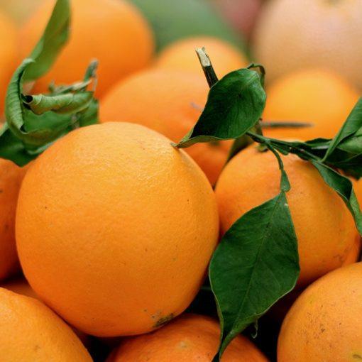 taronja de fulla